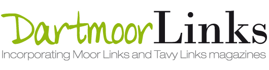 Dartmoor Links