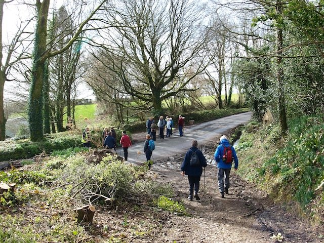 circular walk around St Dominick.jpg