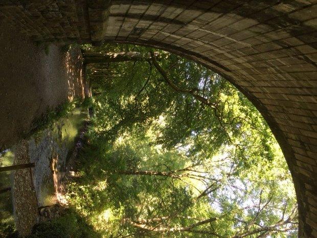 Tavistock Canal near Shillamill 2.jpg