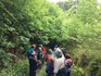 The Wild in the Woods Weekend 2015.jpg