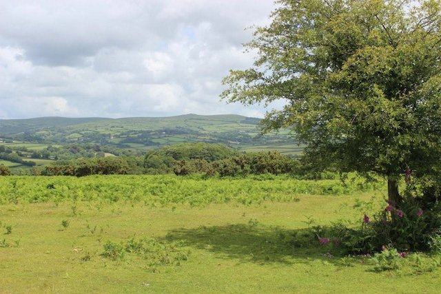 view from long ash