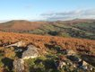 Honeybag Tor to Rippon Tor from Hamel Down.JPG