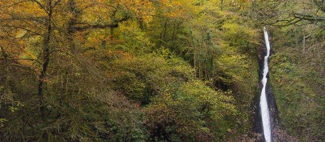 1431760495798-autumn-waterfall-website.jpg