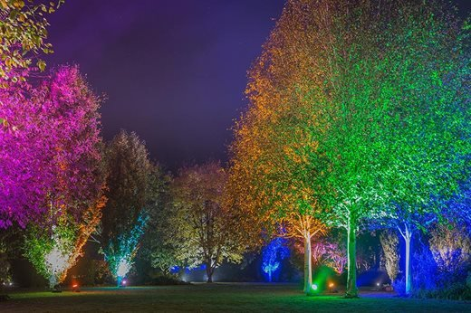 Winter-Lighting-Exhibition-Pre-Preview-9_940x627.jpg