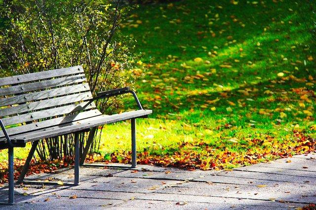 wood-bench-241005_1920.jpg