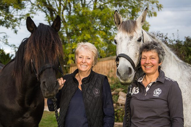 Andalucian Horses come to Devon