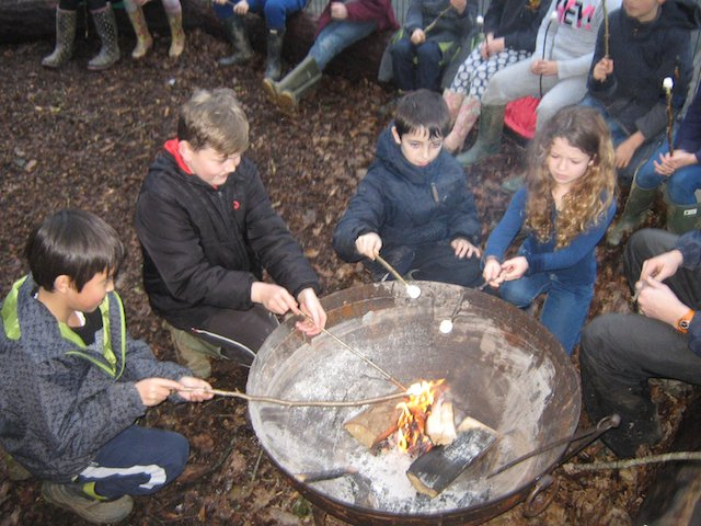 Horrabridge School - toasting marshmallows in the fire pit.jpg