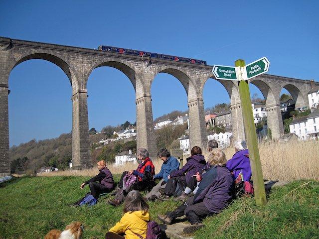 Calstock Viaduct.jpg