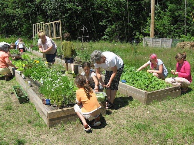 gardening fitness.jpg