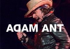 Adam Ant 6 8 Thumbnail.jpg