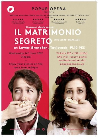 Pop Up Opera poster 2017.jpg