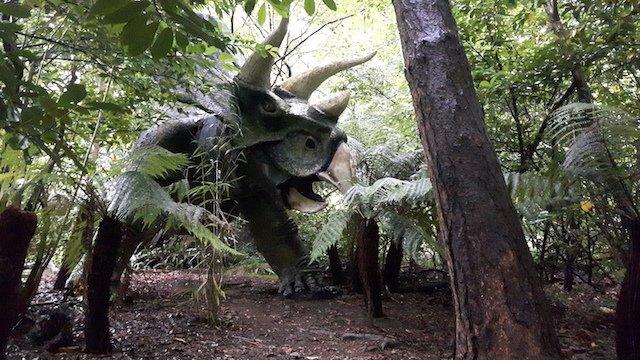 LHB dinosaur roost at Combe Martin .jpg