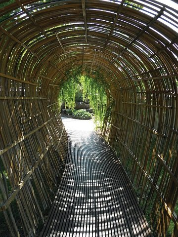 Bamboo Tunnel