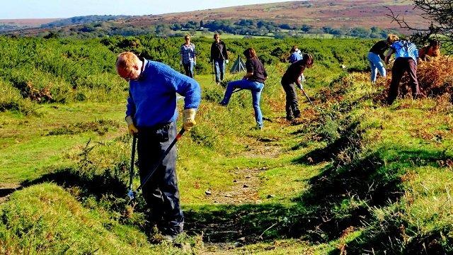 Dartmoor leats