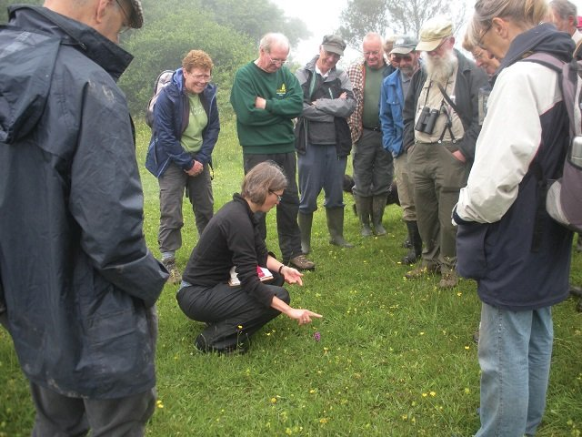 Dartmoor Preservation Association