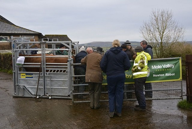 Dartmoor Hill Farm Project