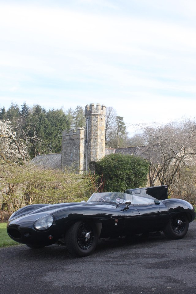 D Type at Buckland Abbey.jpeg