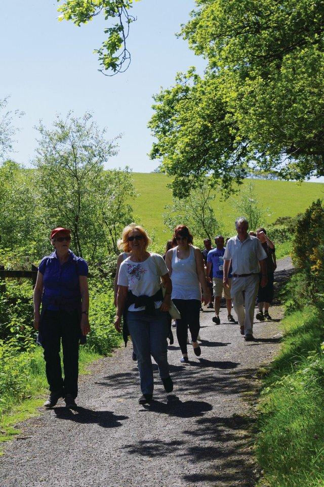 Leafy Lanes Walk