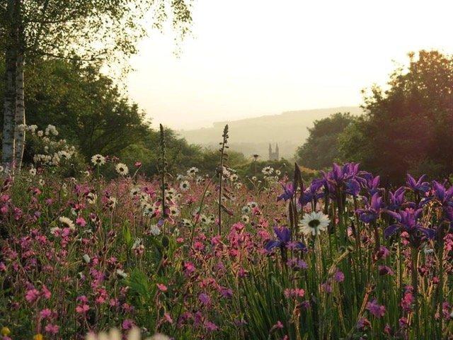 The Garden House, Devon - cottage garden late May evening light