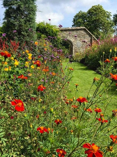 The Garden House Devon- Creating borders