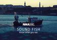 Sound Fish guide