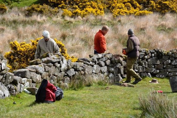 Dry Stone Walling Course