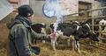 Best Practice Worksop on Farm Buildings