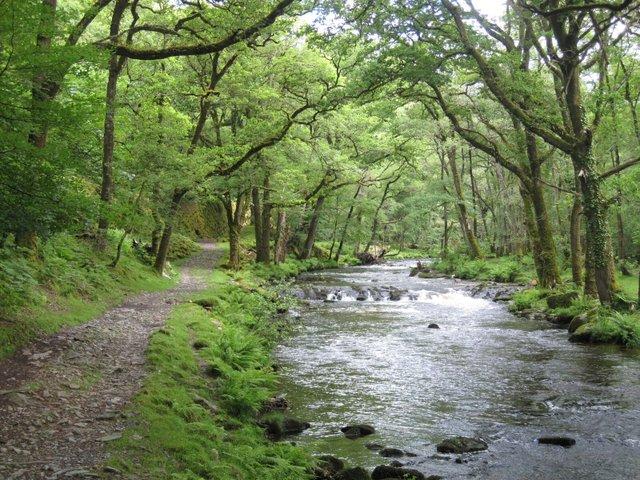 River Walkham near Grenofen