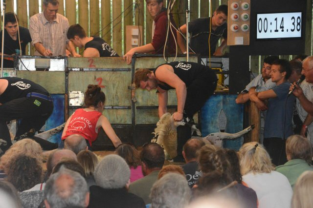 Tavistock Young Farmers' South West Charity Speed Shear