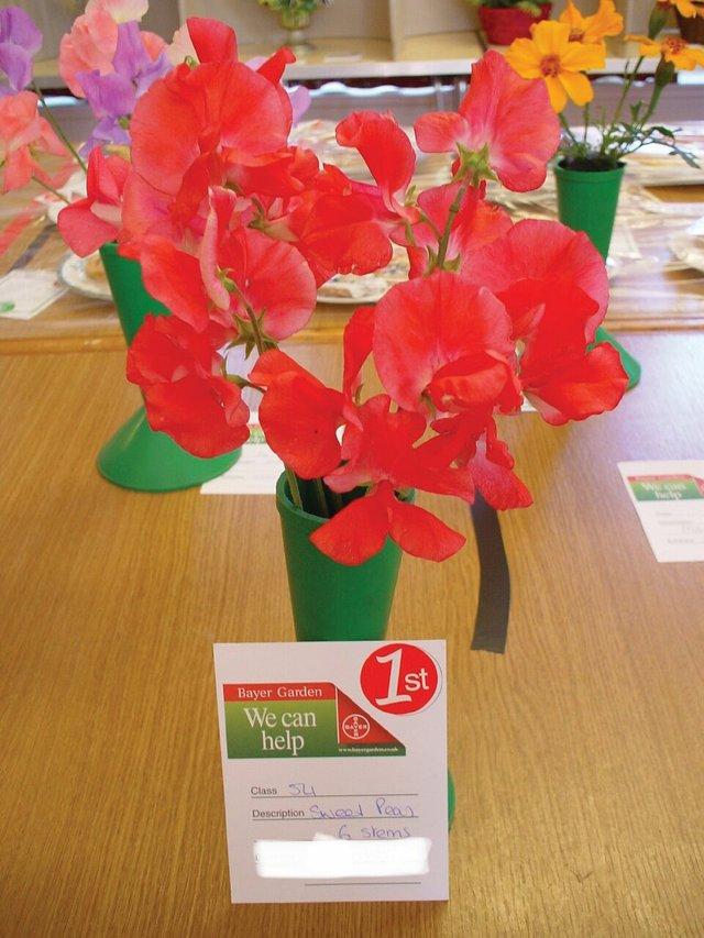Walkhampton Flower & Produce Show