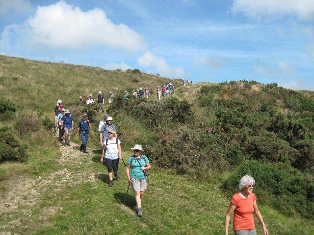 Dartmoor Walking Festival
