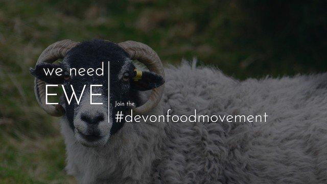 we need ewe.jpg