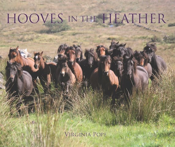 Virginia Pope_Hooves in the Heather_Dusk Jacket AW.jpg