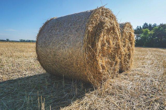 straw-bales-3542589_1920.jpg