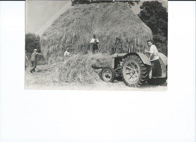 Bondleigh Harvest 6.jpg