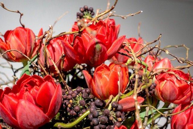 flower-3306809_1920.jpg