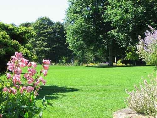 Pines-Garden.jpg