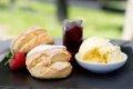Bedford-Hotel-Tavistock-Cream-Tea.jpg