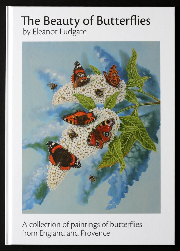 The Beauty of Butterflies, by Eleanor Ludgate