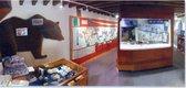 5. Museum desk.jpg