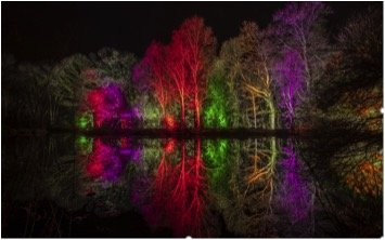 Rosemoor Glow - the stunning illuminations by the lake