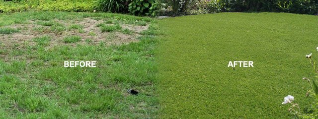 Green Scheme artificial grass