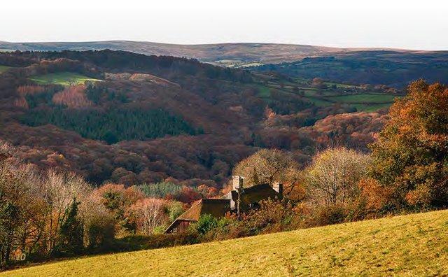 Near Ashburton, Dartmoor National Park