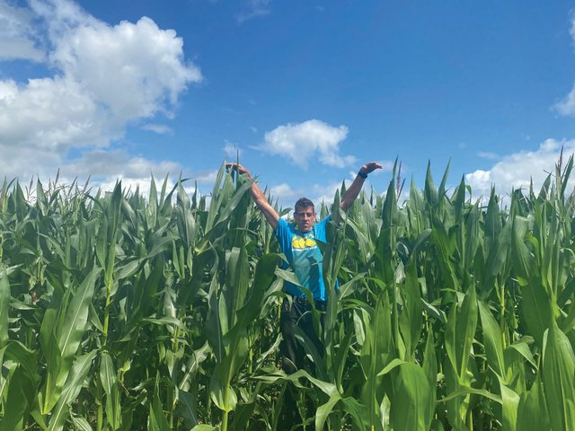 Stuart Luxton in one of the maize fields at the end of July