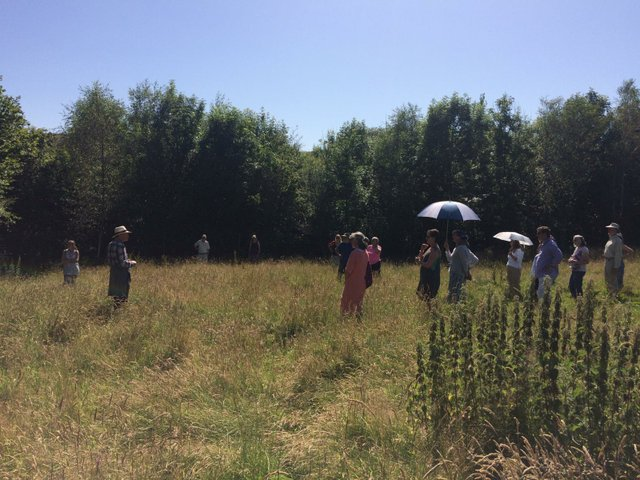 Greener Belstone is a village initiative focussing on how we, as a small rural community, can come up with ideas that can help protect and increase local biodiversity.