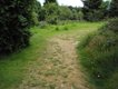 4 Old path.JPG